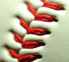 Baseball by waiting4urcall