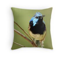Variegated Fairy Wren Throw Pillow