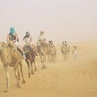 Somewhere in Sahara by MissSunshine