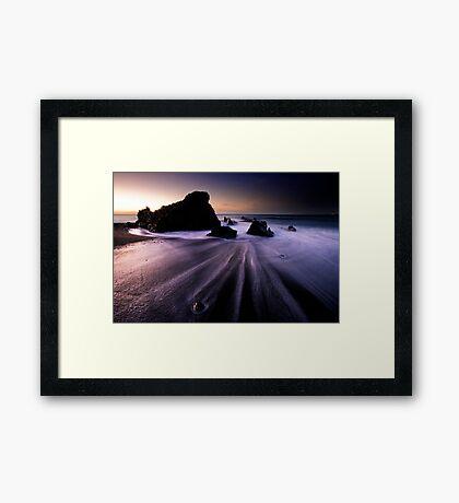 Rock Snail Framed Print