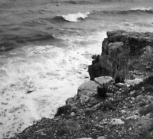 Waves at Portland Bill, Dorset, UK by jenny meehan