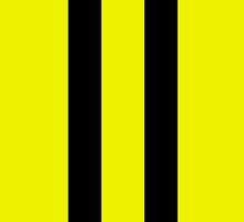 2 black racing stripes by waiting4urcall