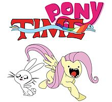 My Little Pony Adventure Time - Angel Bunny & Fluttershy Photographic Print