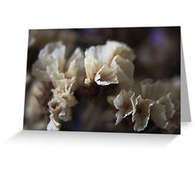 Flowers Dance Greeting Card