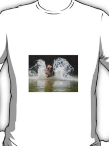 Dog in water T-Shirt