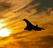 Concorde Comes Home by Paul Davey