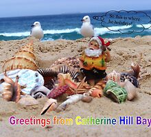 Santa's holiday by Coloursofnature