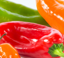Peppers & Chillies Sticker