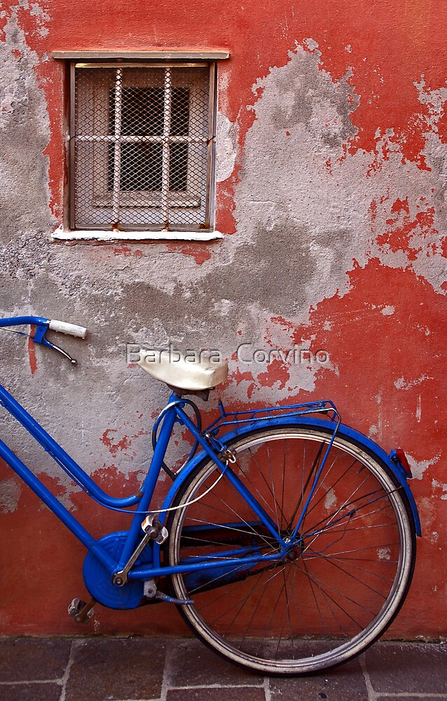 Half bike by Barbara  Corvino