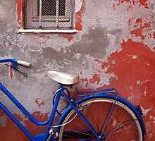 Half bike by Barbara  Corvino