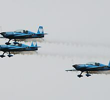 The Blades Practice Flight by Richard Durrant