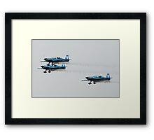 The Blades Practice Flight Framed Print
