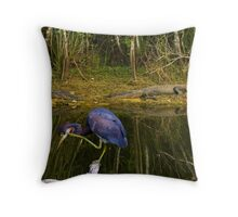 Scratching & Napping Throw Pillow