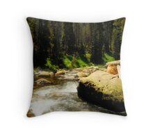 Sequoia Stream Throw Pillow