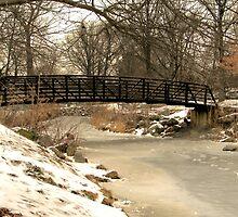 Winter Walk by Charlotte Hertler
