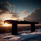 Bluebell Sun by JayteaUK
