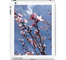 Spring Peach Blossoms  iPad Case/Skin