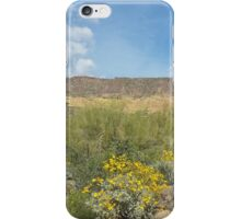 The Superstitions  - Arizona Landscape iPhone Case/Skin