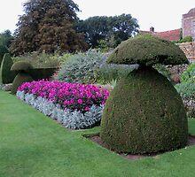Garden Splendour  by hootonles