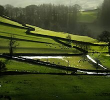 green and pleasant land by Dan Shalloe