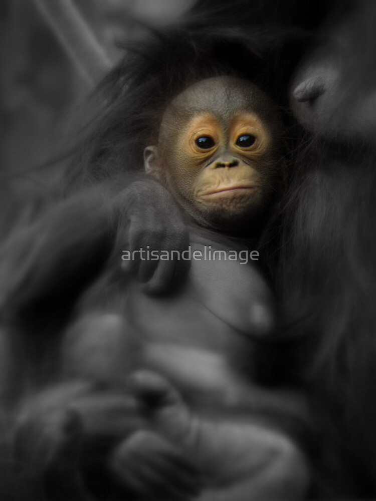 I Am Precious... by artisandelimage