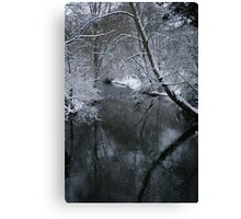 Winter Trees over the River Canvas Print