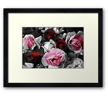 Black and White Roses Framed Print