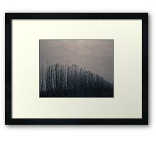Tall Grasses on the Roadside Framed Print