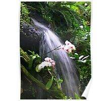 Orchids Waterfall Paradise Poster