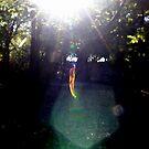 Falling Leaf by Melissa  W