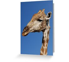 Sticking My Neck Out - Moremi Game Reserve, Botswana Greeting Card