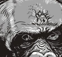 Gorillas Thinkers Sticker
