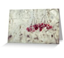 Retro Frozen Rowan 2 Greeting Card