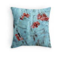 Retro Frozen Rowan 4 Throw Pillow