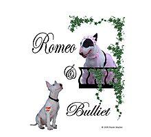 Romeo & Bulliet Photographic Print