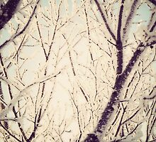 Retro Trees in Hoarfrost by AnnArtshock