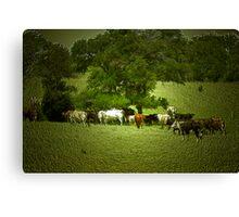 Cattle Drive ? Canvas Print