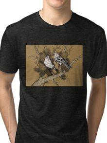 Birds Tri-blend T-Shirt