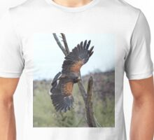 Harris Hawk Hunting Unisex T-Shirt