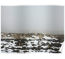 Snowy Winter Farm Land Dirt and Straw Landscape in Fog 3 - Earth's Surface without structural buildings, war, or blood by man - natural peaceful nature. Poster