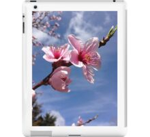 Peach tree blossoms iPad Case/Skin
