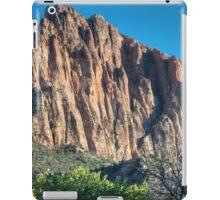 The Sentinel iPad Case/Skin
