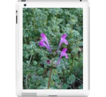 Tea plant iPad Case/Skin