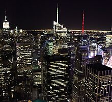 Night Time View of New York City by northernsecret