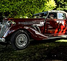 Vintage Red by Steven Maynard