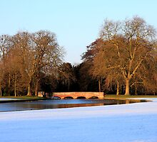 Audley End - Saffron Walden IV by Dave Law
