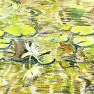 Lilly Pad Still-Life by IreKire