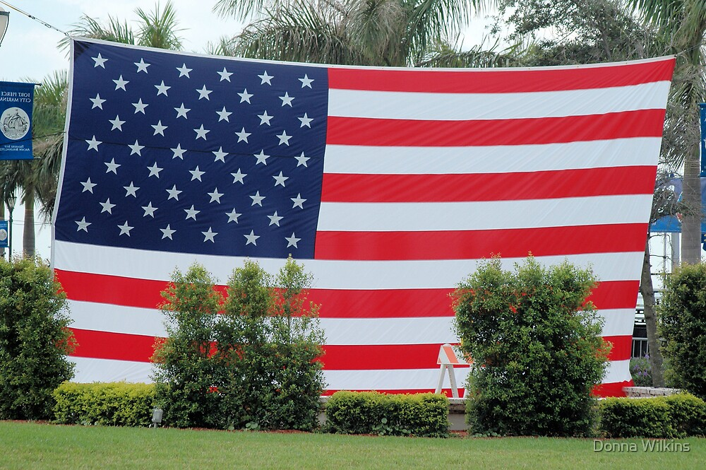 American Flag by Donna Adamski