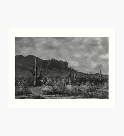 Raw Lands Art Print