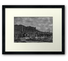 Raw Lands Framed Print